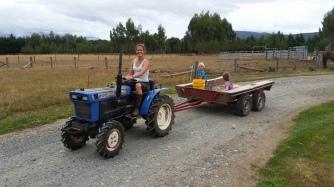 NZ Blauer Traktor