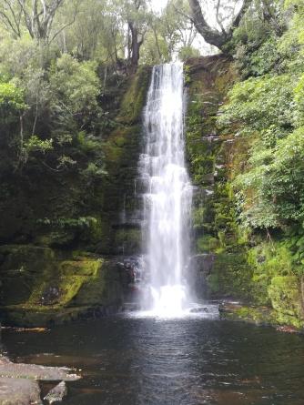 NZ McLean Fall