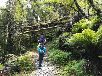 NZ Croesus Track
