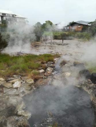 Nz Rotorua heißer Garten