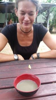 Vanuatu Kava