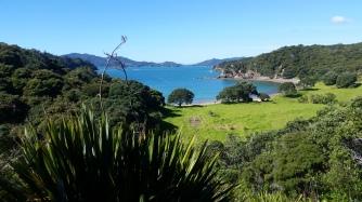 NZ Inselwanderung