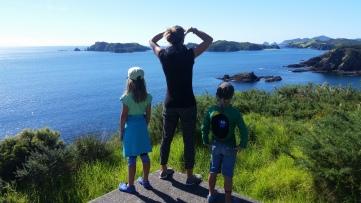 NZ Aussichtshuegel