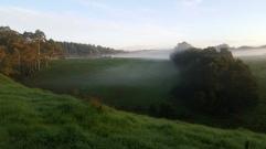 NZ Joggen am Morgen