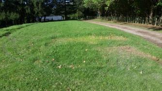 NZ Ullas Platz: leer