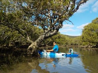 NZ Kajaktour Richtung Bay of Islands