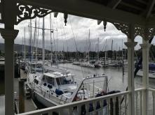 NZ Whangarei Marina