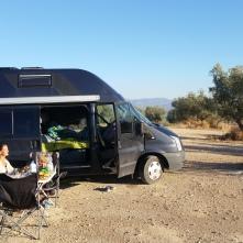 Nugget im Olivenberg