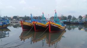 Phan Thiet, Fischer-Flotte in einheitlichen Farben