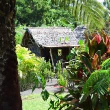 Haus zwischen tausend Pflanzen