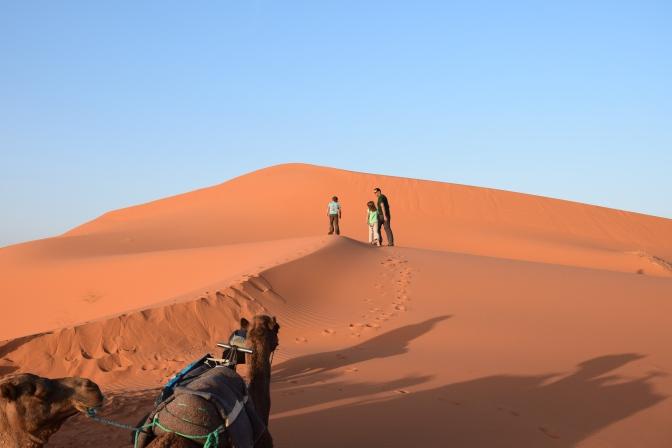 Weite Wüste