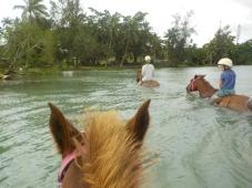 Lagunenreiten