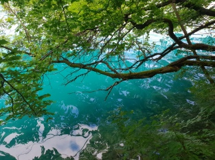 Unglaubliche Wasserfarbe